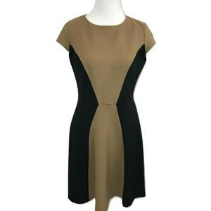 Emma Michele 6 Dress Fit Flare Brown Black Midi
